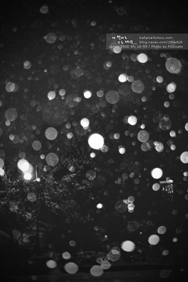 눈 내리던 새벽 - 3Photo