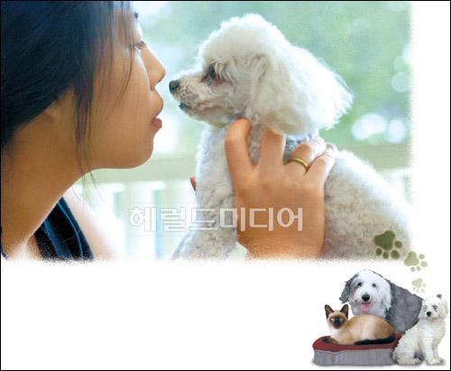 애완동물-애환별곡, 반려동물 키우는 그녀들의 속사정(?)