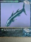 이터널 드림 카드설정 - 바라쿠다
